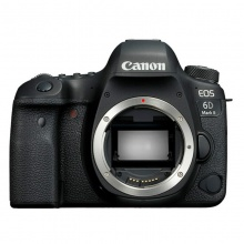 佳能(Canon)EOS 6D Mark II(6D2) 24-105mm IS STM 照相机 单反套机