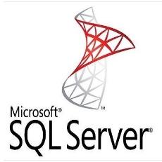 微软SQL server 2019标准版(政府版,服务器端并自带15用户) 数据库管理系统