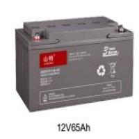 山特(SANTAK) C12-65 不间断电源